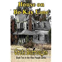 House on Bo-Kay Lane (Wee People Book 2)