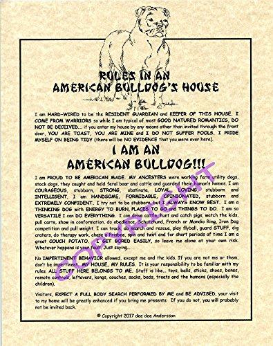 Rules In An American Bulldog's House