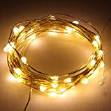 Starlight 25ft LED String Lights - Gold Flexible Wire