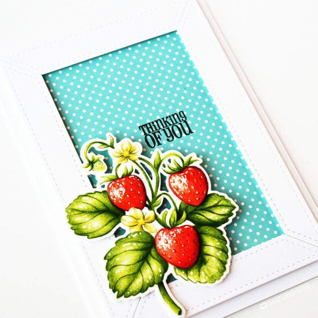 Frame Metal Cutting Dies DIY Scrapbook Paper Cards Album Art Photo Craft Stencil hudiemm0B Cutting Dies Silver
