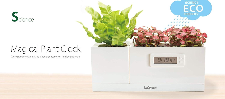 LeGrow Smart Garden- Maceta Inteligente–Cultivo en Interior–hidropónico Kit- modellotg-s (Science–Magical Plant Reloj) jarrón Indoor con Reloj Sin Pilas