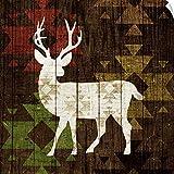 Canvas on Demand Michael Mullan Wall Peel Wall Art Print Entitled Southwest Lodge I 16''x16''