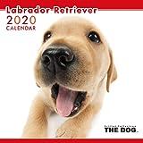 アーリスト 2020 THE DOG カレンダー ラブラドールレトリーバー