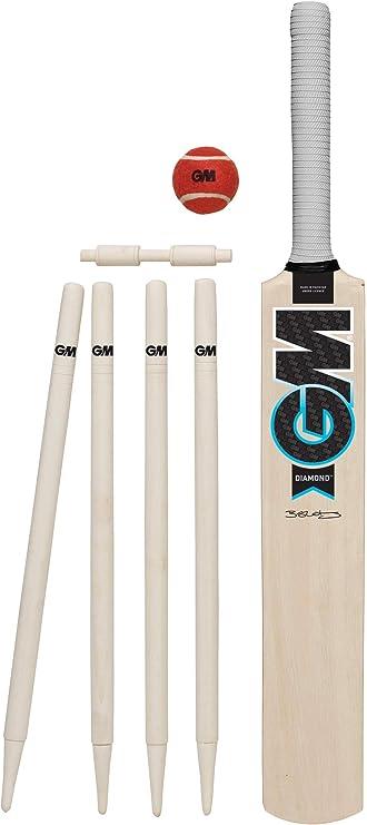 stumps beginner bat GM Opener Childrens kids cricket play at home garden set