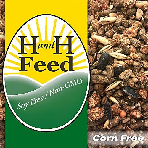 NON-GMO OLD FASHIONED Grain-Lay MIX Hen Layer 19% Soy-Free Corn-Free 20# FREE SHP!!