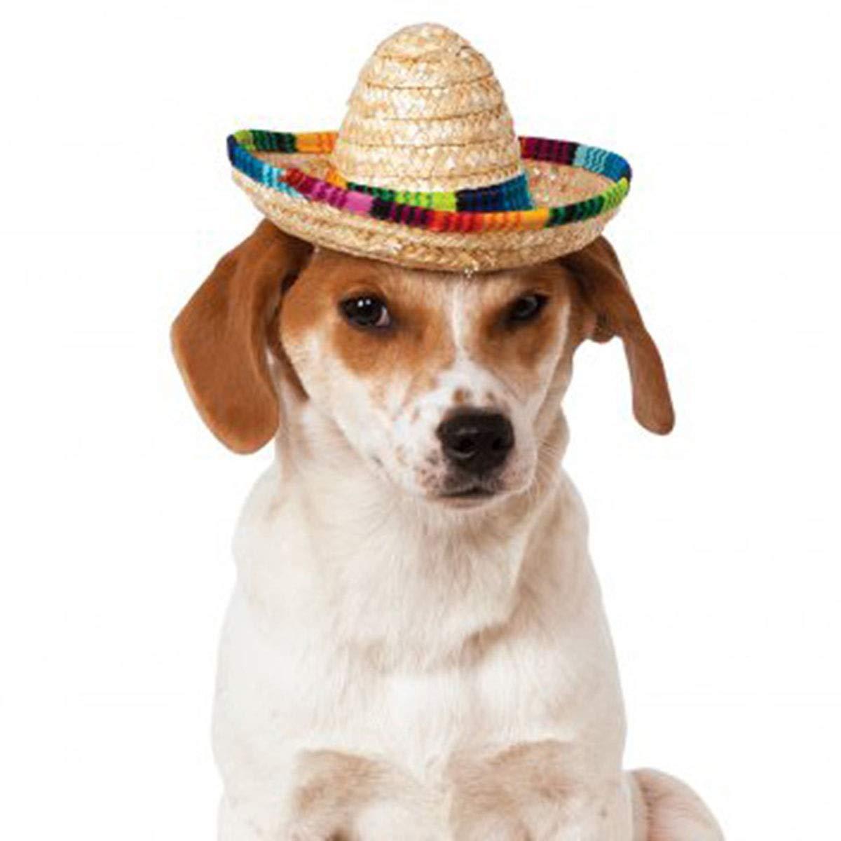 Amazon com : AOFITEE Pet Straw Sombrero Hat Multicolor Puppy