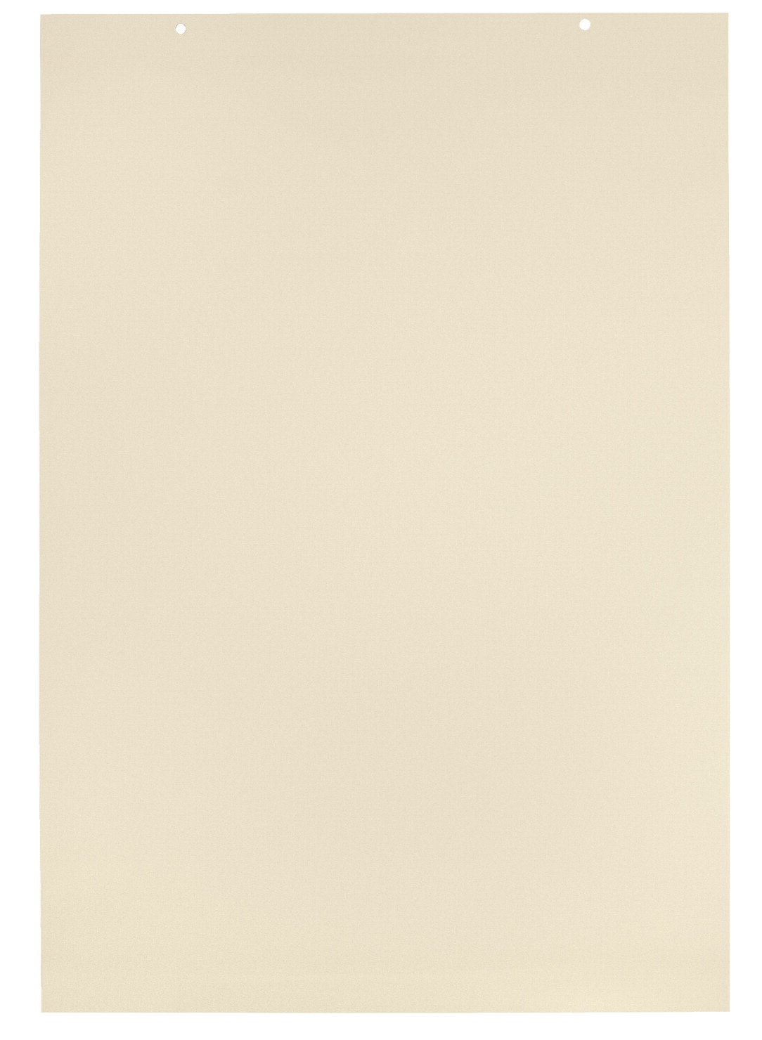 School Smart Unruled Manila Tag Chart Paper - 24 x 36 inches - Pack of 100 (6438)