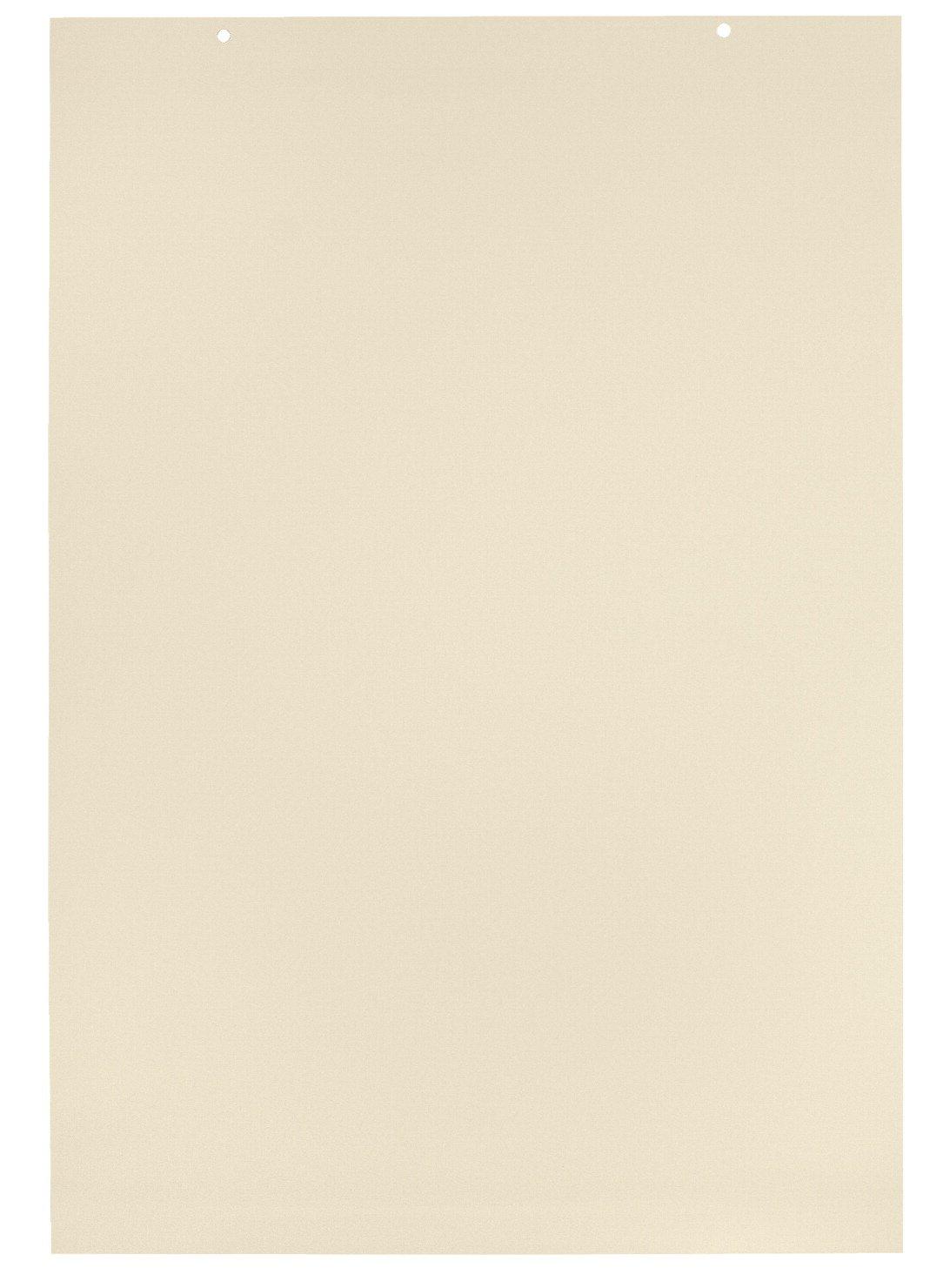 School Smart Tag Chart Paper - 2 feet x 3 feet - 1 inch Rule - Pack of 36 Sheets - Manila