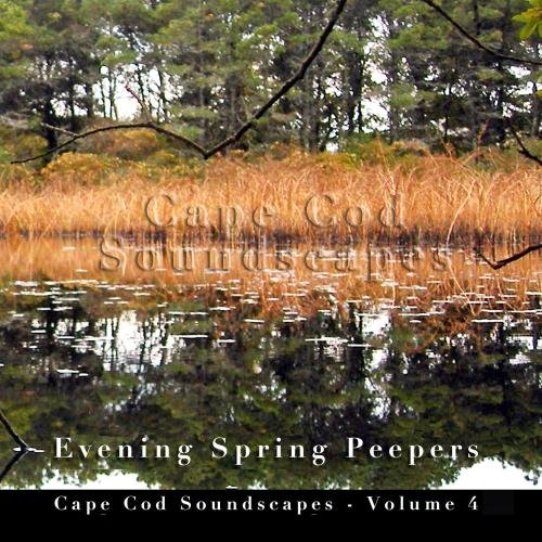 Evening Spring Peepers - Cape  Cod Soundscapes Vol. 4