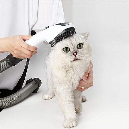 EZ repuesto nuevo diseño para Dyson Herramienta de Aseo y limpieza, perro gato animal mascota accesorio masaje mano cepillo Absorción electrostática aspiradora con instrucciones para Navidad regalo: Amazon.es: Hogar