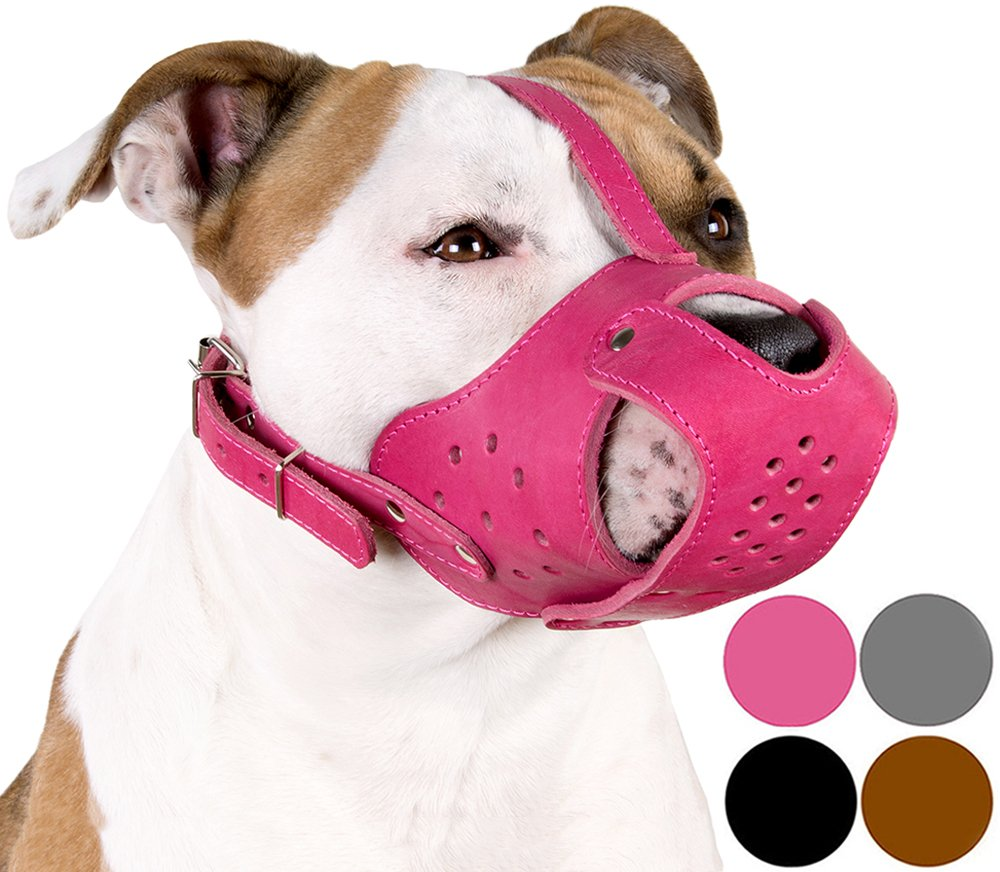 CollarDirect Dog Muzzle Pitbull Amstaff Basket Genuine Leather Staffordshire Terrier (Pink) by CollarDirect