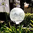 Clear 10 Inch Gazing Ball for Garden