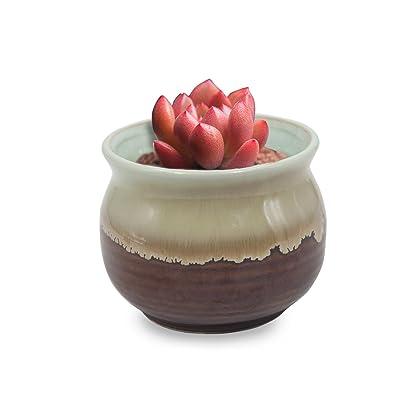 Dahlia 3.3'' Inch Rustic Drip Glazed Ceramic Planter/Succulent Pot/Plant Pot, Chocolate: Garden & Outdoor