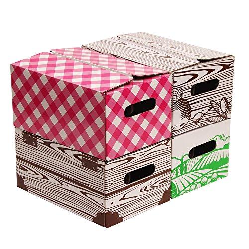 Quart Jar Storage Boxes by VICTORIO (Quart Box)