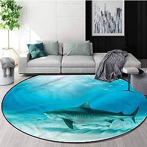 RUGSMAT Shark Modern Vintage Rugs,Dangerous Oceanic Wildlife Baby Room Decor Round Carpets Round-47