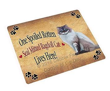 Amazon.com: Sello mitted Lynx Ragdoll Spoiled Rotten gato ...