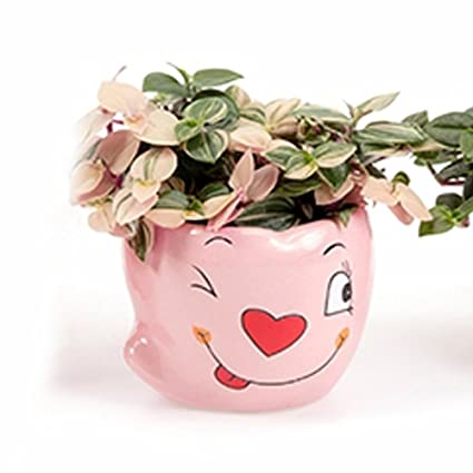 Amazon Better Way Round Modern Adorable Pink Smiley Face Floral
