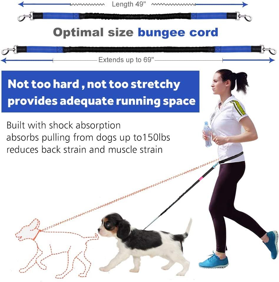 Ideal for Medium to Large Dogs Dual-Handle Shock Absorbing Reflective Bungee Black//Green Adjustable Waist Belt and Pouch LANNEY Hands Free Dog Leash for Running Walking Training Hiking