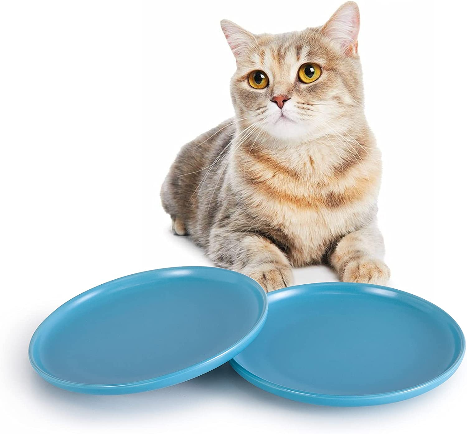 SIDUCAL Ceramic Shallow Cat Dish,8 Inch High-Capacity Non Slip Wide Cat Food Bowls,Whisker Fatigue Free Cat Food Dish,Cute Pet Plate for Cat,Dishwasher Safe(Sky Blue-2 Packs)