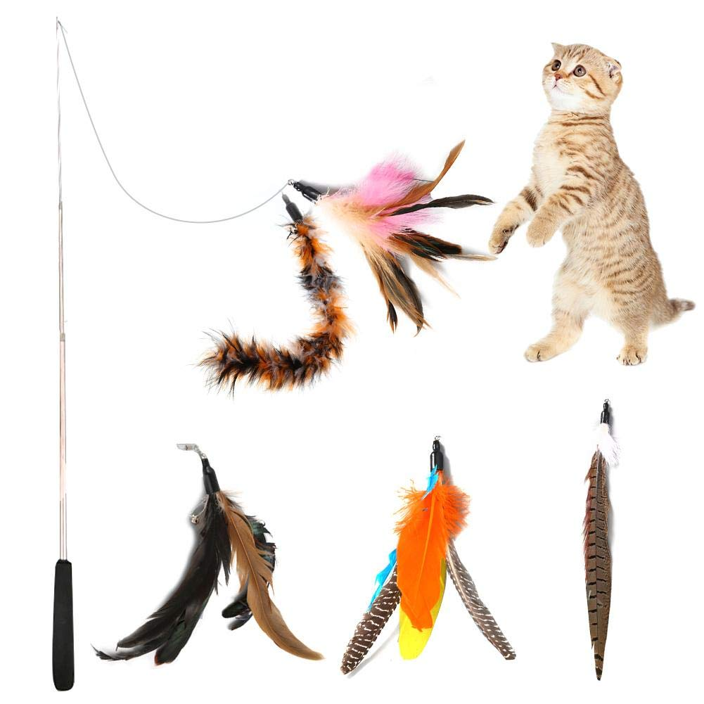 Funny Cat Interactive Feather Toys Bast/ón retr/áctil con Cinco Cabezales de Repuesto y Cada uno con una Campana para Gatos Gatito QUUY Juguetes para Gatos Cat Feather Toy