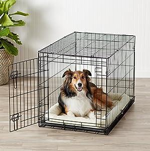 Amazonbasics jaula plegable para perros medianos for Puertas perros medianos