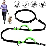 Greensen Hands Free Dog Leash for Running with Dual Bungees, Free Control for Up to 150 lbs Dogs, Double Handles Adjustable  Waist Belt for Running, Jogging or Walking