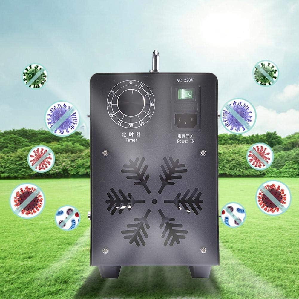 ZSLGOGO 5000mg/H Generador de ozono Profesional, Temporizador Ajustable generador de ozono purificador de Aire, Eliminador de olores Industrial para Habitaciones, Humo, Coches y Mascotas