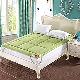 DHWJ Plain thickening mattress Warm single double tatami soft cushion Mattress quilt-B 180x200cm(71x79inch)