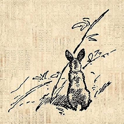 Amazon.com: Rabbit Print Vintage Artwork Bunny Wall Art Antique ...