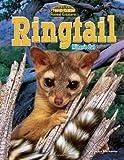 Ringtail, Joyce L. Markovics, 1617725803