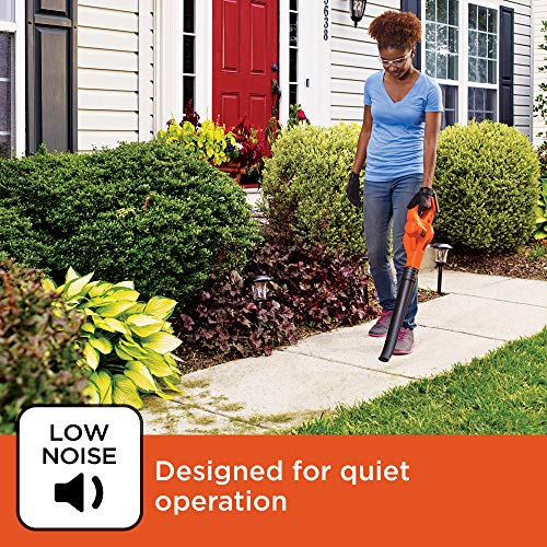 BLACK+DECKER LSW221 20V MAX Lithium Cordless Leaf Blower Sweeper