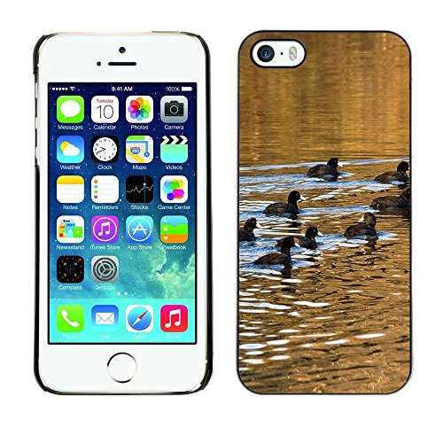 Hülle Case Schutzhülle Cover Premium Case // F00000391 Wasserreflexionen // Apple iPhone 5 5S 5G