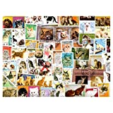 Cats : 50 Different Stamps Collection Mixture Packet Stamps for Collectors