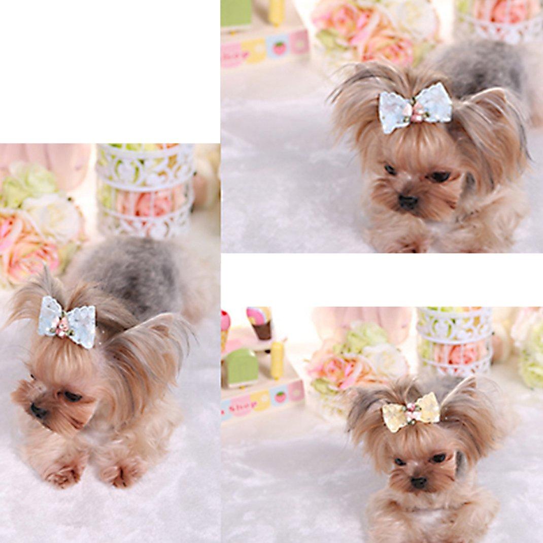 10 Pcs Set Dog Hair Clips Small Bowknot Pet Grooming Products Mix
