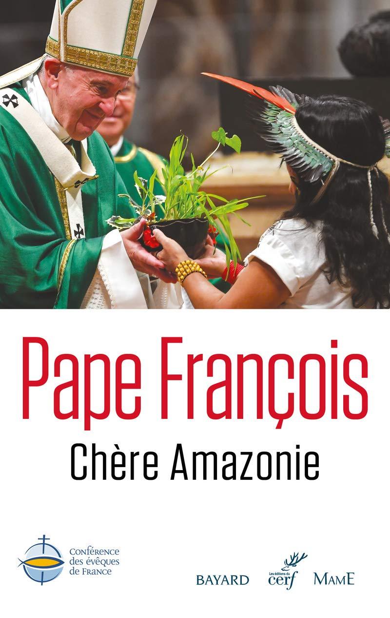 """Résultat de recherche d'images pour """"chère amazonie pape françois"""""""