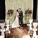 B-COOL Sheer Curtain Backdrop - 4ftX6.5ft Matte Gold Photography Backdrop,studio backdrop curtain,party backdrop curtain,wedding backdrop curtains