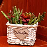 EXDJ Straw Wicker rattan Flower basket pure handmade wall hanging potted mini flowerpot,Black,16x11cm