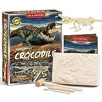 PowerKing Cocodrilo Dinosaurio Fossil Dig Kit,Desenterra Fósiles Reales, Gran Ciencia Arqueología Regalo de…