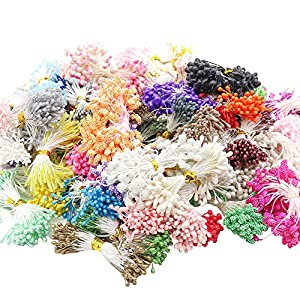 100g/lot,Approx 1100pcs Random Mixed Size Double Heads Artificial Flower Stamen (Style 1) 55