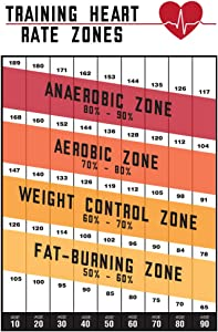Training Heart Rate Zones Workout Gym Fitness Aerobic White Cool Wall Decor Art Print Poster 12x18