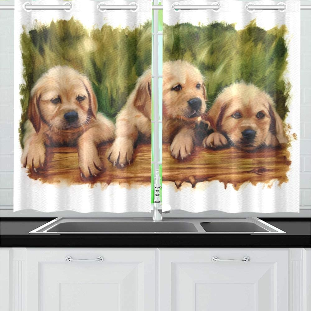 Qiaolii Three Puppies Dog Lovers Lab Golden Kitchen Curtains Window Curtain Tiers For Café Bath Laundry Living Room Bedroom 26 X 39 Inch 2 Pieces Amazon Co Uk Kitchen Home