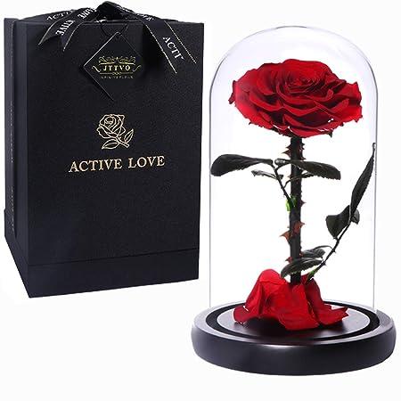 Regalos originales para mujer rosa bella y bestia JTTVO flores preservadas rosa eterna en cúpula regalos para tu novia san valentin madres cumpleaños ...