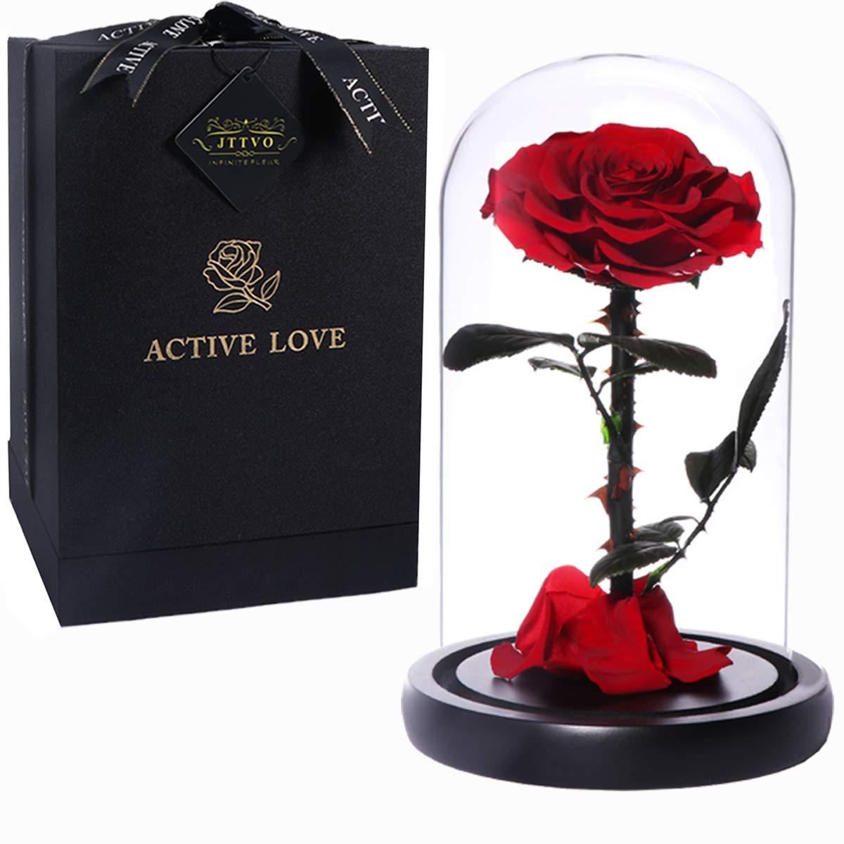 sieJTTVO Die Schöne und das Biest Rosen im Glas konservierte echte Rosen besondere Geschenke für Frauen Jahrestag Geschenk für sie Muttertag(Red) Bild