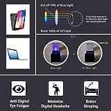 LifeArt Blue Light Blocking Computer