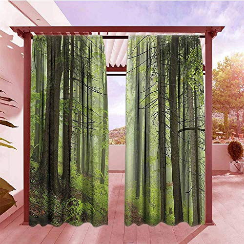 Darkening Curtains Outdoor Trail Trough Foggy Alders Beeches Oaks Coniferous Grove Hiking Theme All Purpose Lined Rod Pocket Drapes W84x84L Light Green Light Yellow