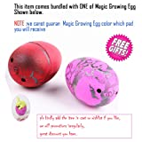 11 Pcs Smart Capsule Egg Kids Baby Study Color