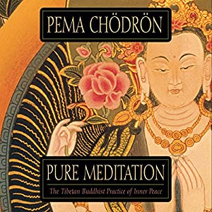 Pure Meditation Audiobook