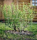 Fiberglass Garden Stakes, Tomato Stakes, Plant