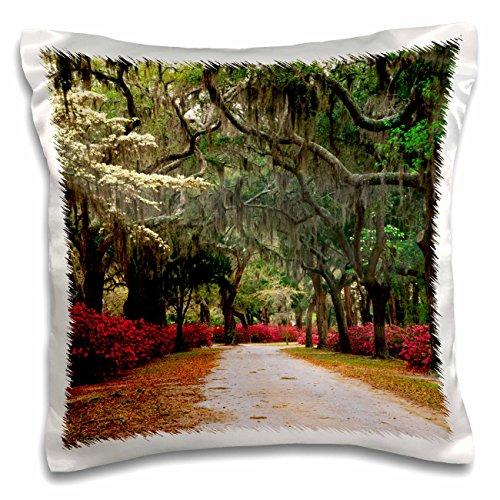 3dRose Danita Delimont - Georgia - Azaleas, live oaks, moss, Savannah, Georgia, USA - US11 AJE0031 - Adam Jones - 16x16 inch Pillow Case (pc_143770_1)