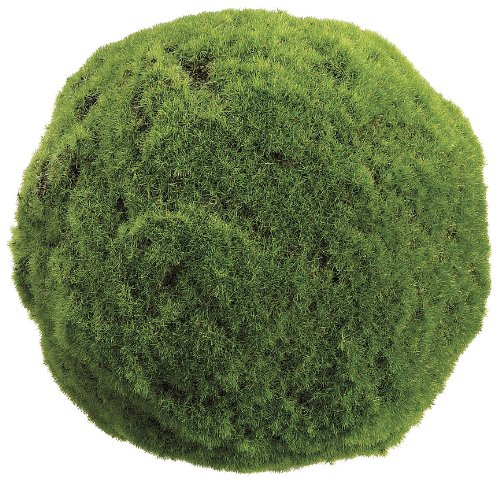 allstate-floral-craft-moss-ball-plant-95-inch-green